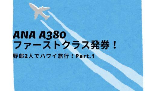 野郎2人で海外行くよ!1万円のハワイ旅行 Part.1