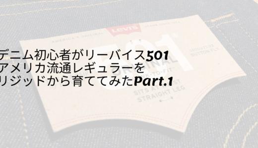 デニム初心者がリーバイス501アメリカ流通レギュラーを育ててみたPart.1